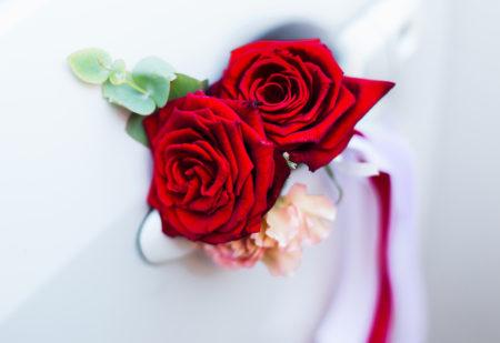 ローゼの薔薇