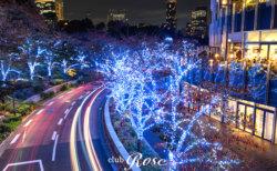 東京ミッドタウンの近くにクラブ・ローゼはあります。